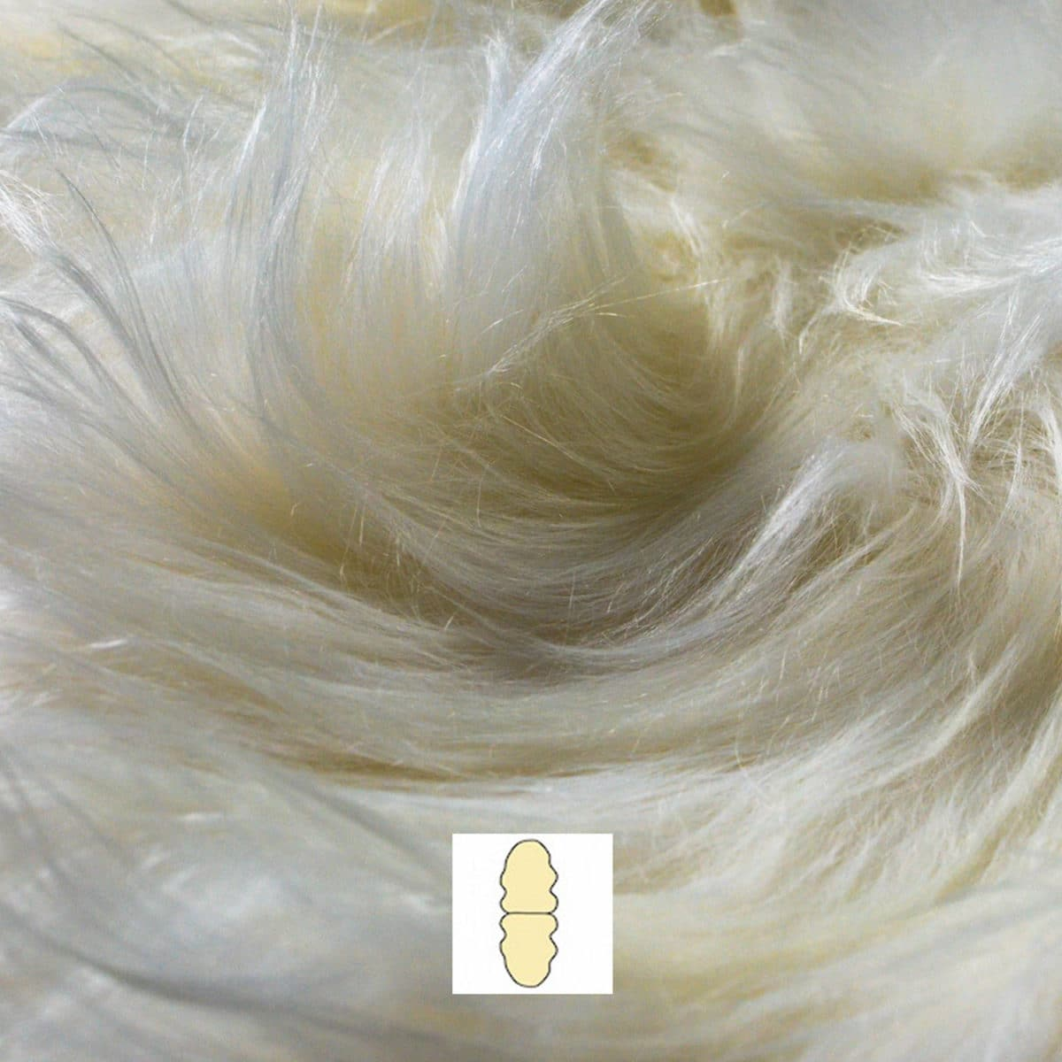 White Icelandic Double Sheepskin Rug