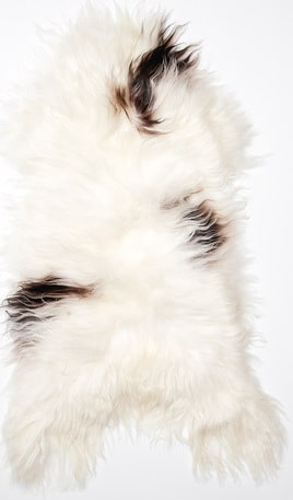 SNUGRUGS Icelandic Spotted Sheepskin Rug