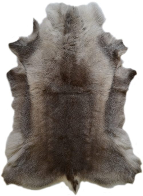 Reindeer Hide - Dark Markings - Large